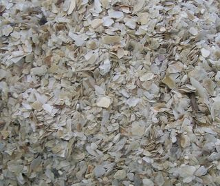 Oyster Shell Coarse Grit 2kg