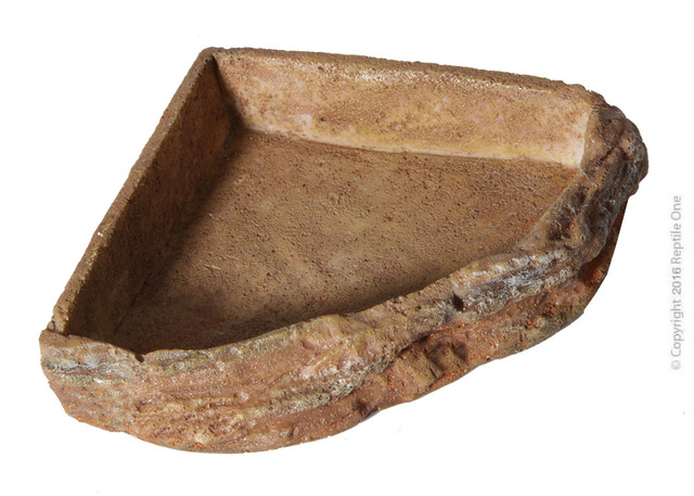 Reptile One Corner Bowl - Small